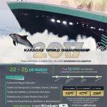 Concurso Mundial de Karaoke 2017.